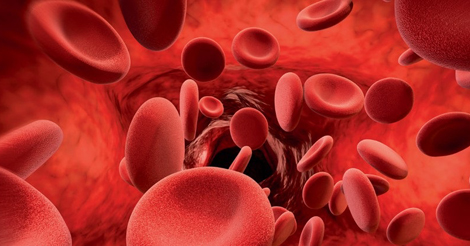 red-blood-cells-07-2017.jpg