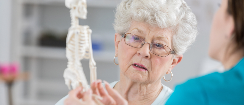Doctor showing an elderly woman a model of a skeleton