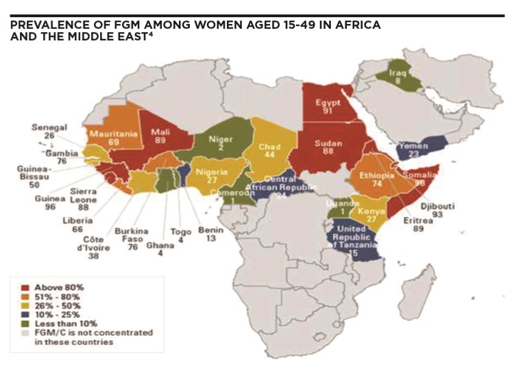 Female genital mutilation - Background and approach to management - Map