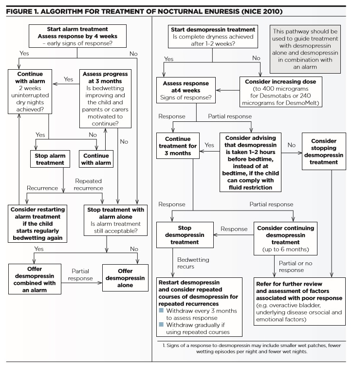 Childhood Nocturnal Enuresis - Assessment and Management in Primary Care - Fig 1
